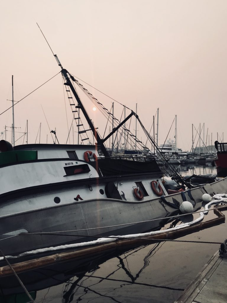 sunrise vessel refloat 3