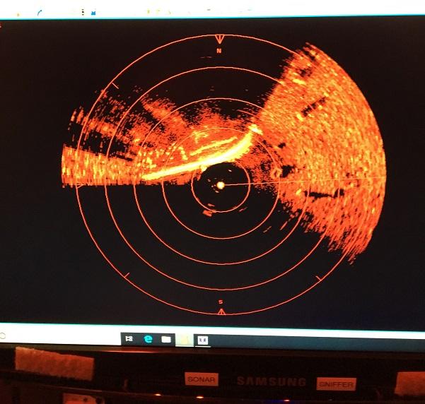 samantha j rov salvage sonar