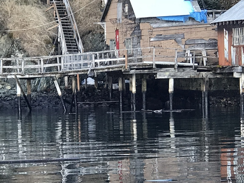 Under a Unified Command response, containment boom is placed around the oil spill site in Port William, Alaska, March 9, 2018. Alaska Chadux personnel have deployed 3,340 feet of floating boom around the dock structure in efforts to reduce the spread of the spill and absorb the remaining oil. Photo courtesy of Global Diving and Salvage.