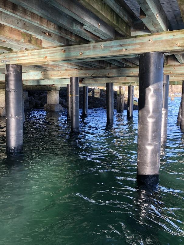 saltys understructure repairs