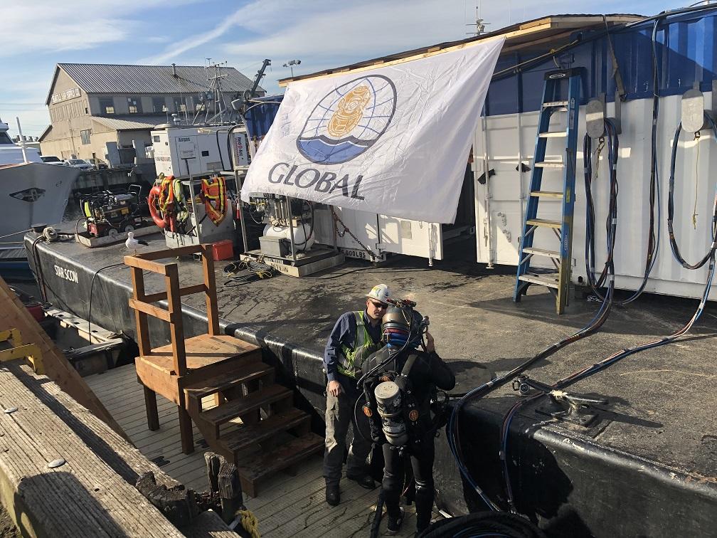 fishermans terminal pile improvements